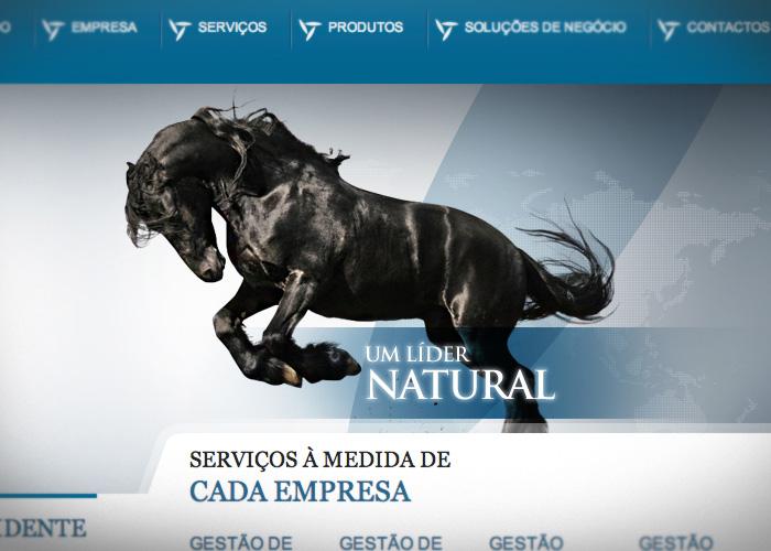 Webdesign / FRego Seguros